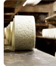 formaggio-caprino-bl